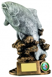 Fishing Trophies - trophyman co uk